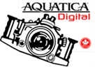 AquaticaDigitalSmallimage004