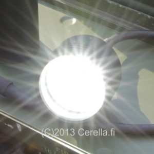Cerella_NLS_1x80W_featured_401A0656