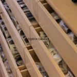 Cerella_Stock_CU1F0648_1k