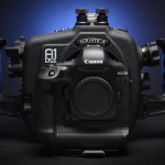 Underwater Canon 1D C and 1D X Camera Housings